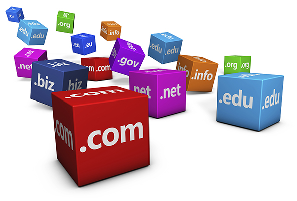 The Power of Exact Match Domain Names