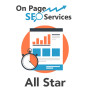 complete on page seo solution