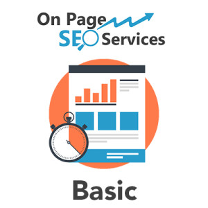 professional on page seo services